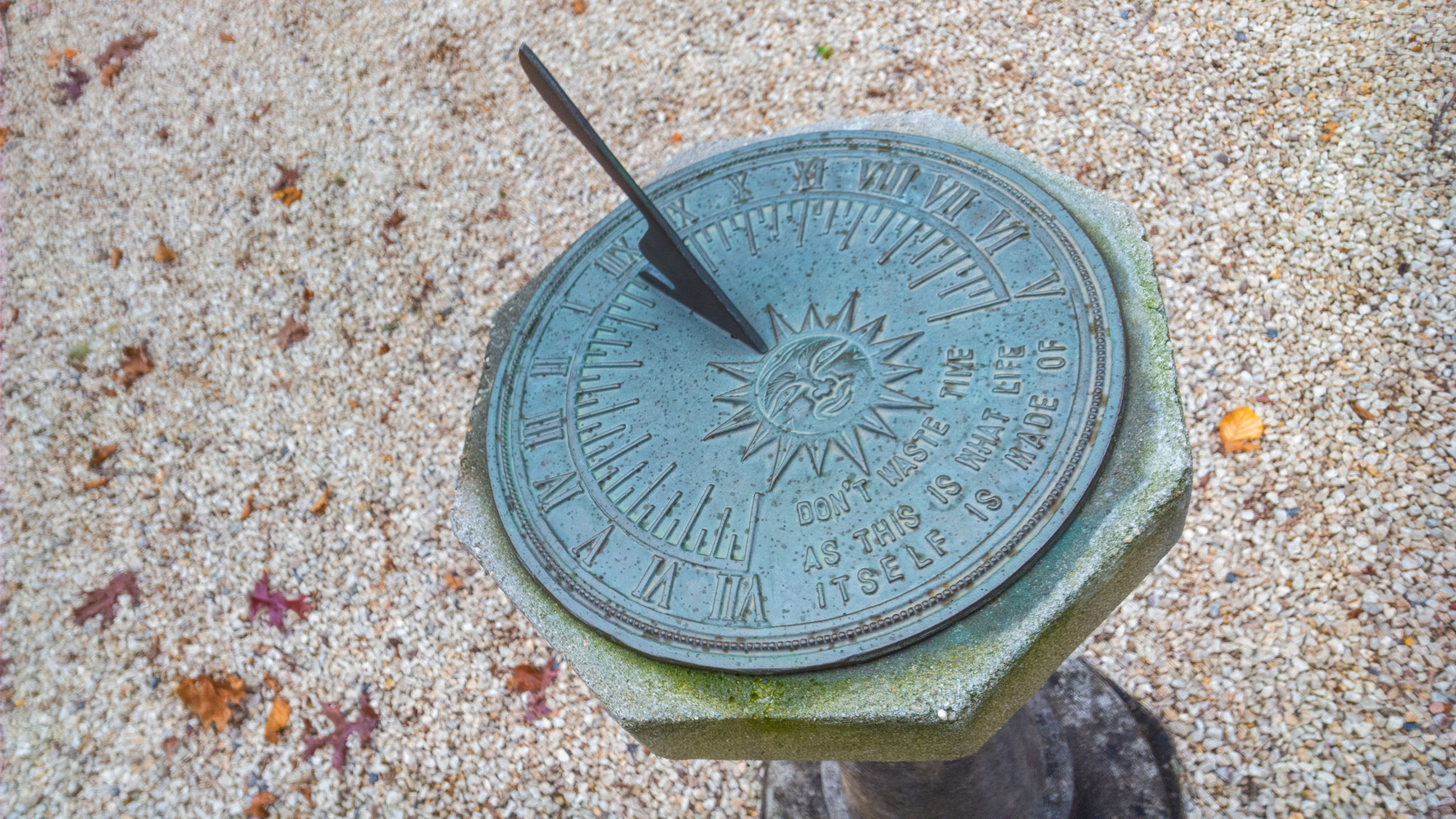 High angle view of sundial in garden