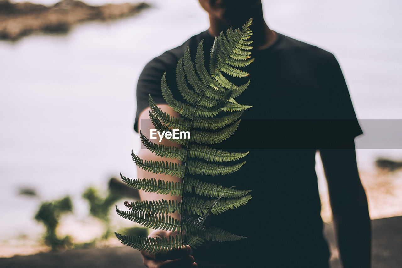 Close-Up Of Man Holding Fern