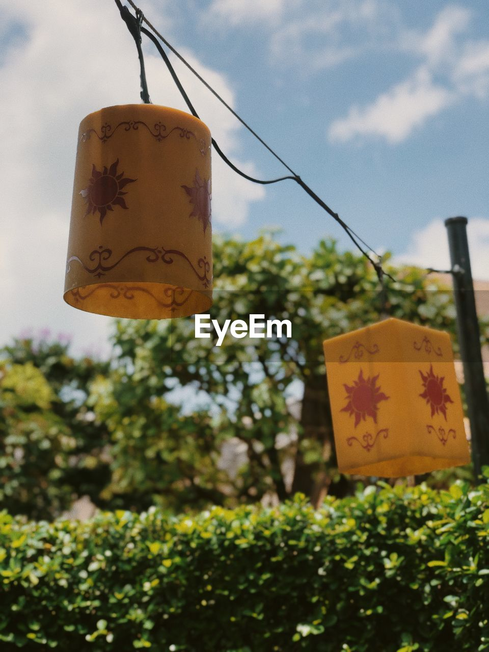 hanging, plant, text, communication, focus on foreground, nature, day, script, yellow, tree, no people, non-western script, close-up, outdoors, selective focus, string, low angle view, label