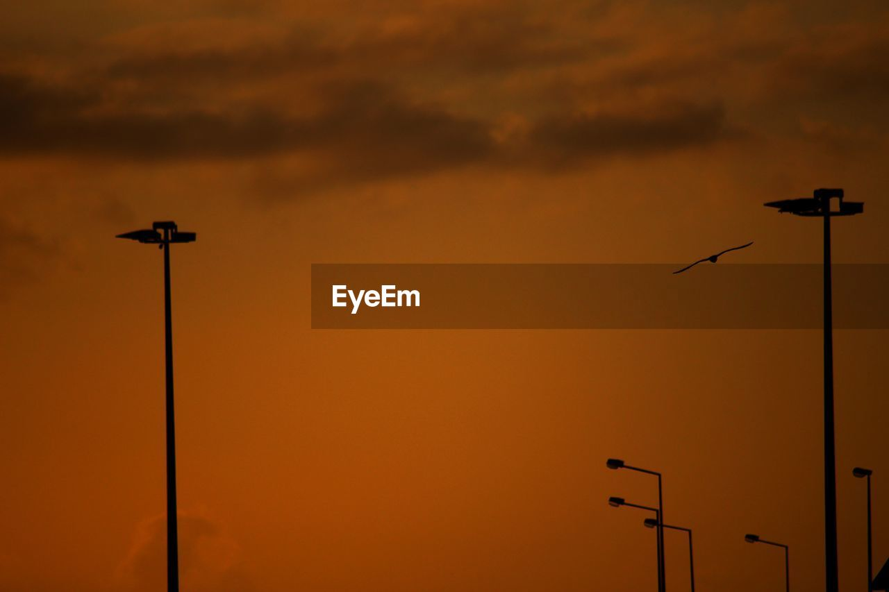 sunset, silhouette, technology, low angle view, street light, cloud - sky, connection, no people, sky, communication, nature, beauty in nature, outdoors, scenics, television aerial, bird, day