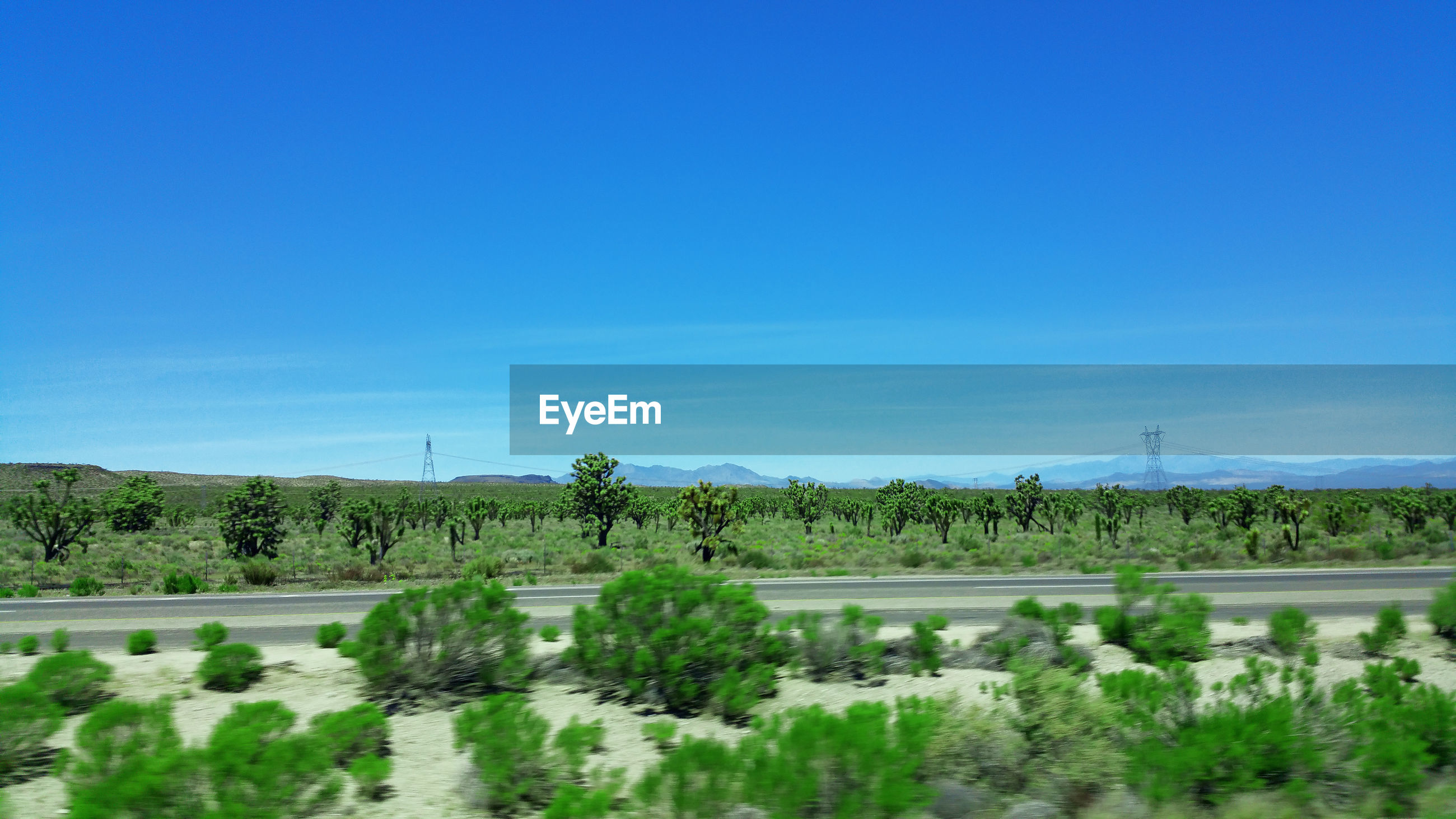 Image from mojave desert