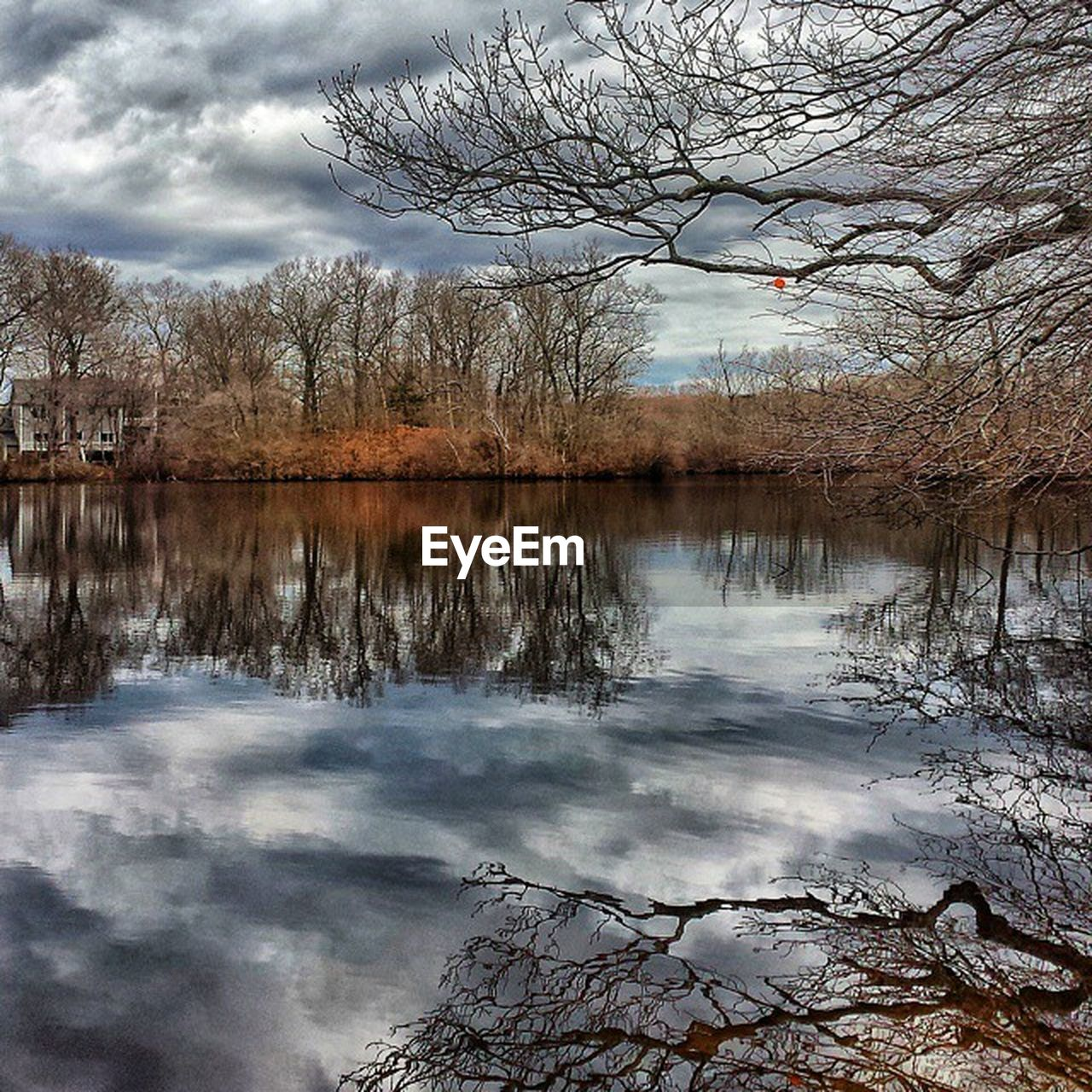 reflection, tree, lake, beauty in nature, nature, water, bare tree, tranquility, tranquil scene, sky, scenics, cloud - sky, outdoors, no people, landscape, day, branch