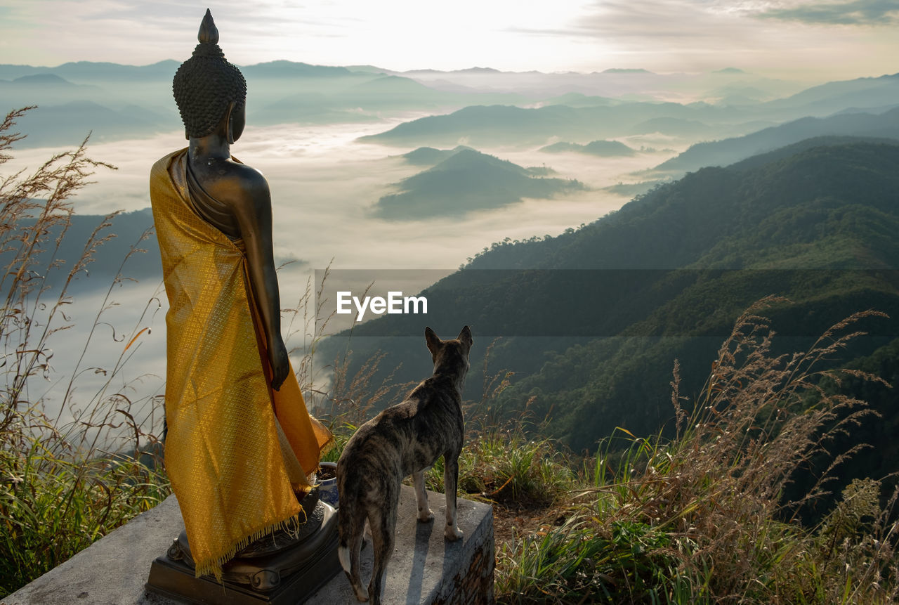 sky, mountain, animal themes, animal, mammal, beauty in nature, domestic animals, nature, one animal, vertebrate, sculpture, plant, pets, domestic, art and craft, sitting, scenics - nature, statue, religion, mountain range, no people