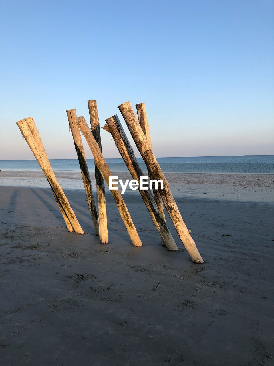 water, sea, sky, horizon, horizon over water, beach, wood - material, land, tranquil scene, tranquility, scenics - nature, beauty in nature, nature, no people, idyllic, sand, day, non-urban scene, clear sky, outdoors, post, wooden post, driftwood
