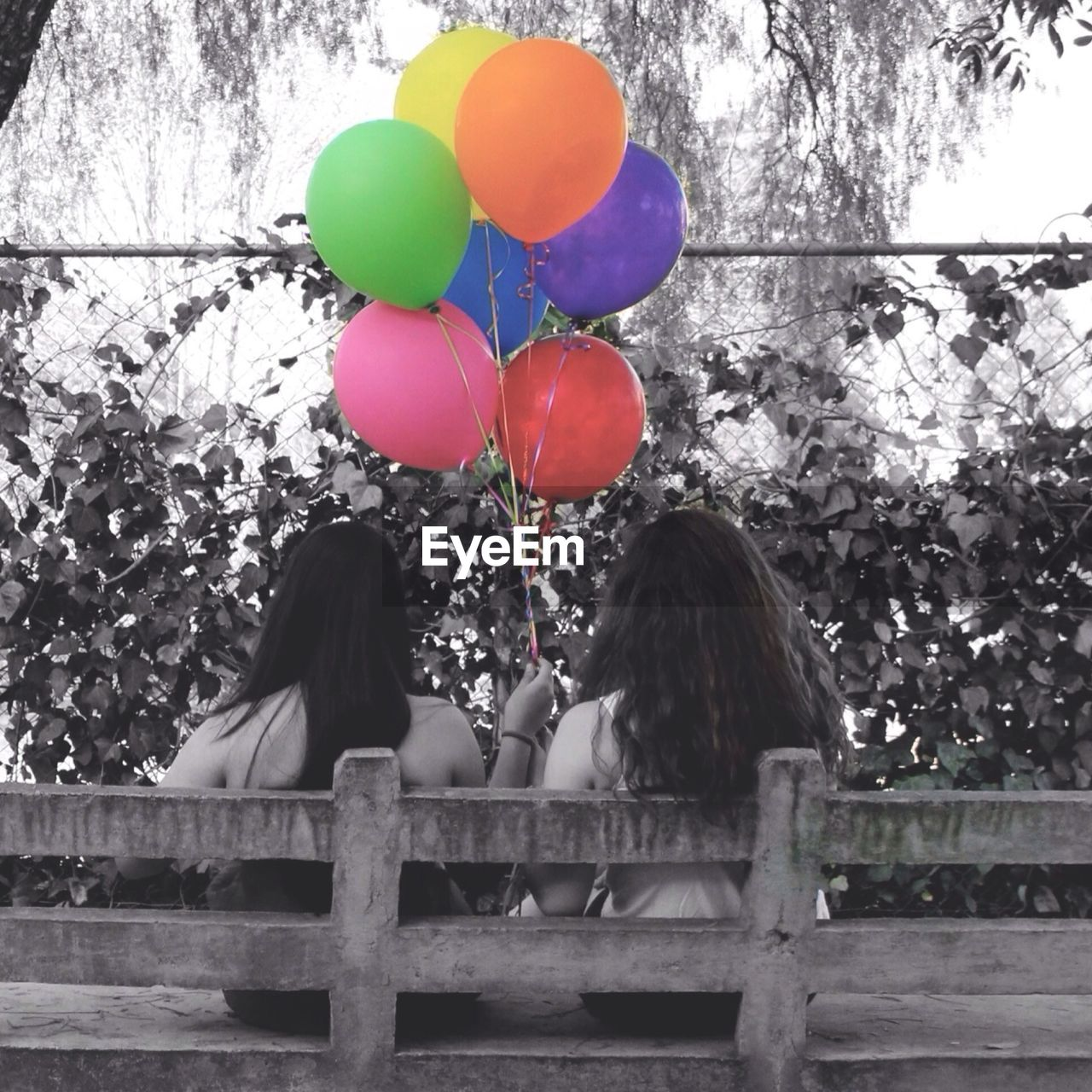 Rear View Of Women Holding Colorful Balloons In Park