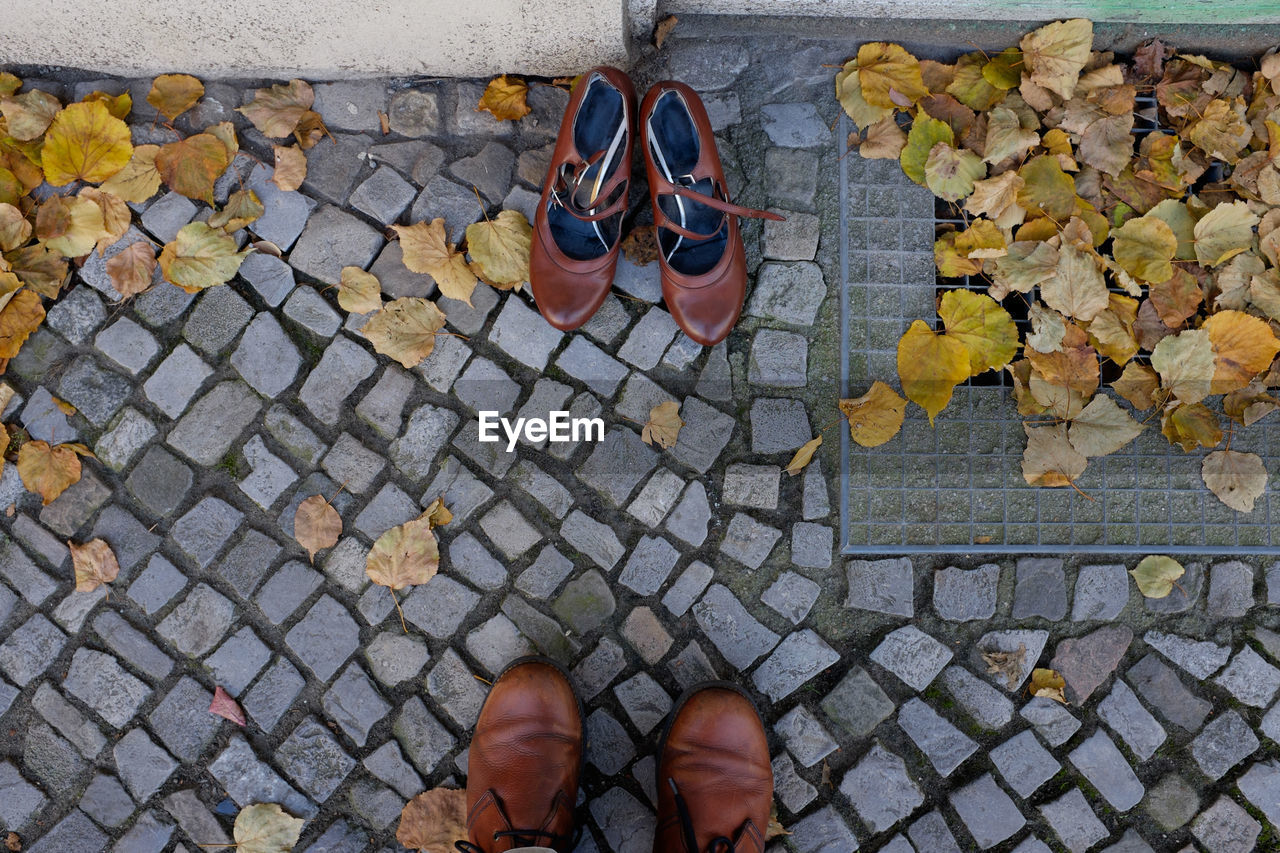 Directly above shot of brown shoes on footpath during autumn