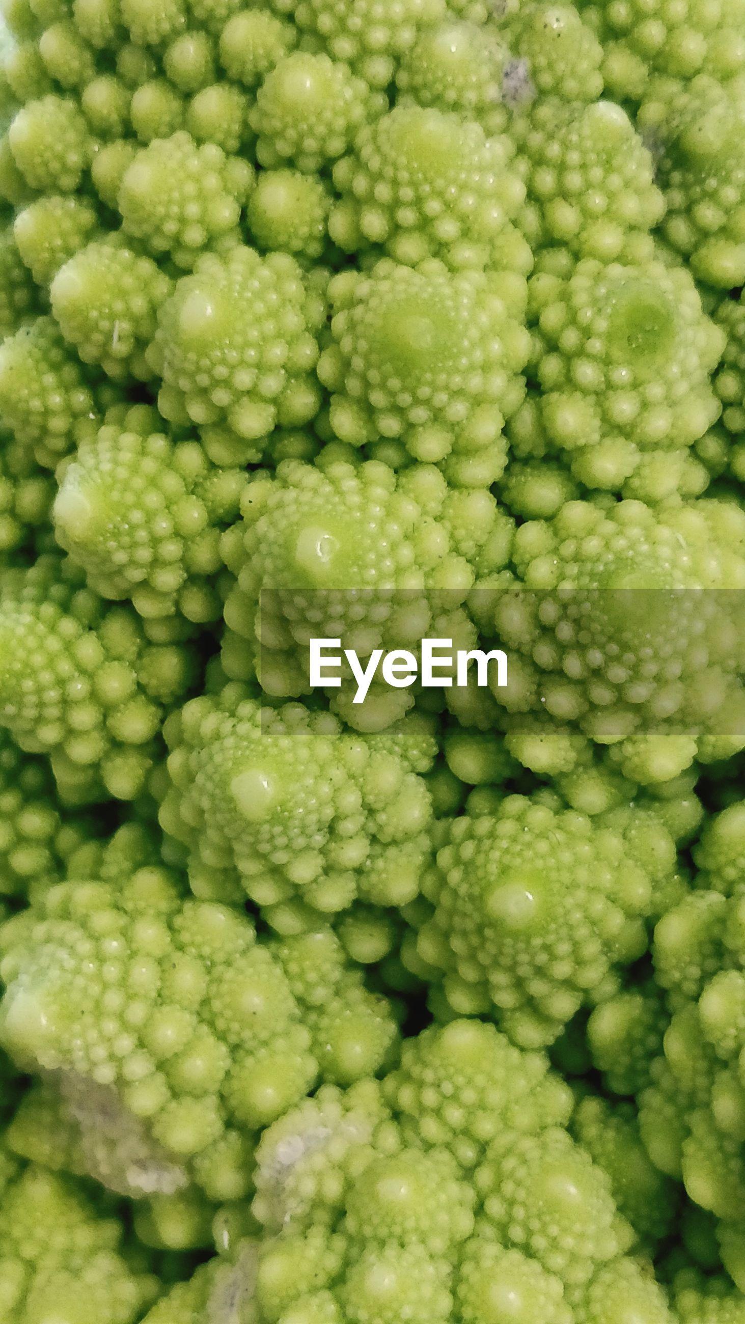 Full frame shot of green broccoli