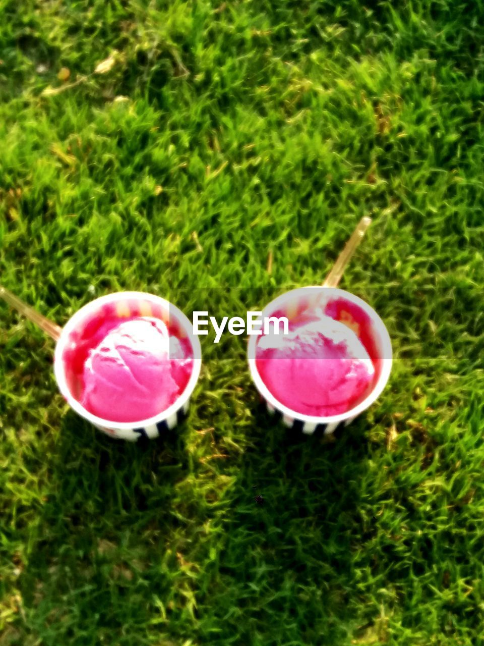 grass, pink color, high angle view, food and drink, green color, no people, drink, growth, day, outdoors, close-up, freshness, nature