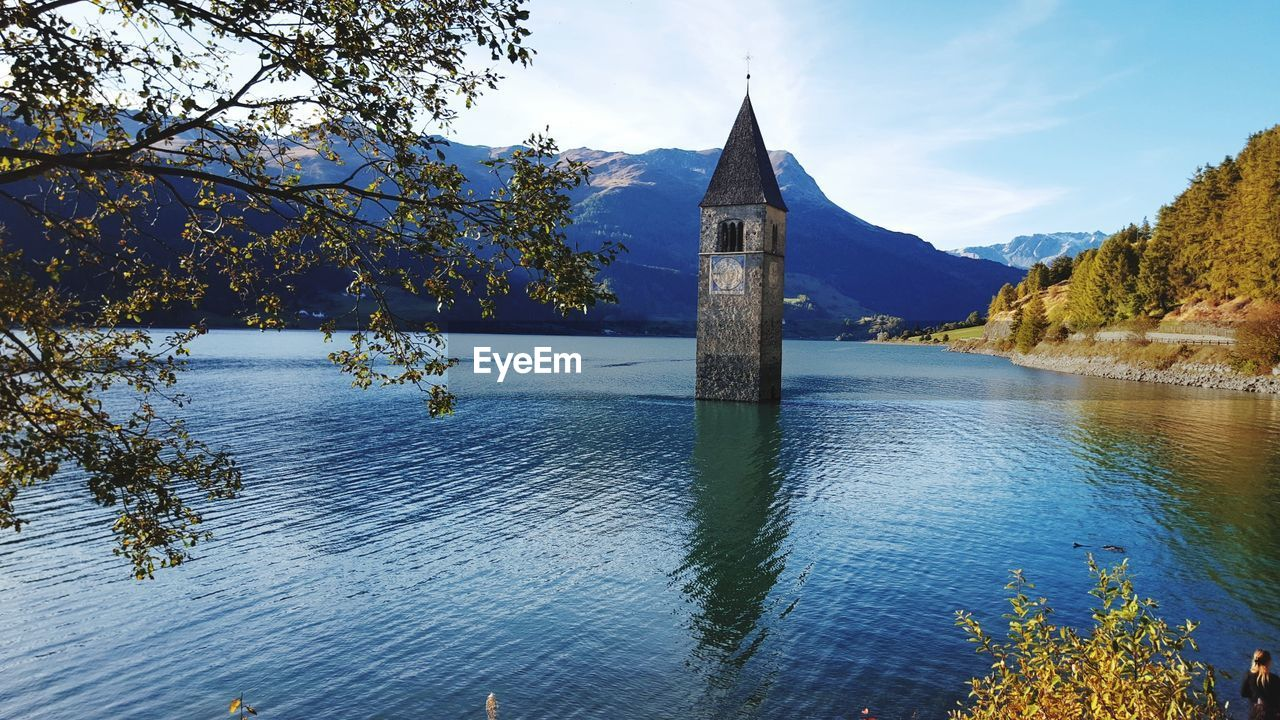 nature, tree, beauty in nature, tranquility, no people, tranquil scene, growth, lake, water, day, sky, scenics, outdoors, mountain
