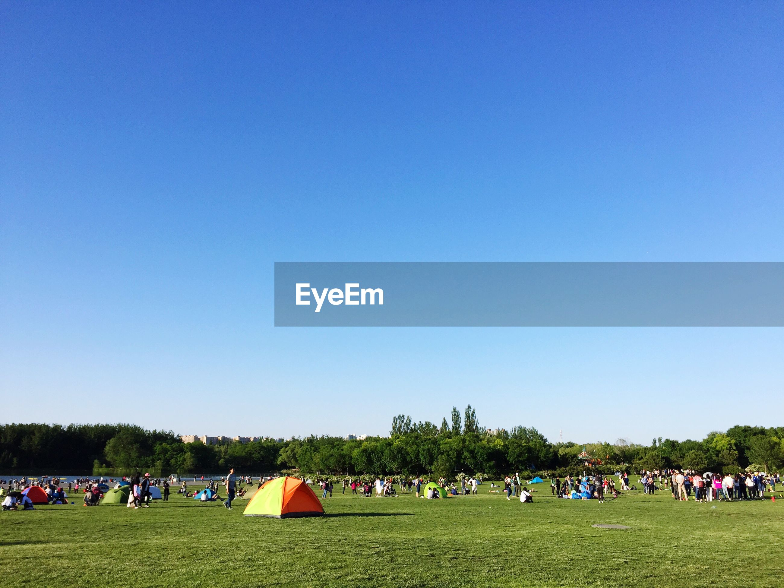 People at park against clear blue sky