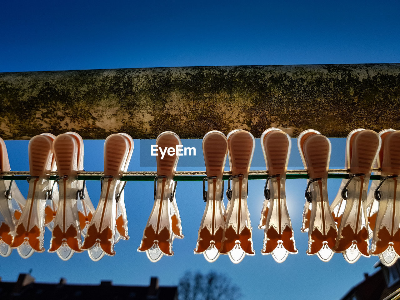 sky, clear sky, hanging, nature, side by side, no people, in a row, blue, day, tree, plant, railing, sunlight, outdoors, low angle view, copy space, group of objects, tranquility, metal, repetition