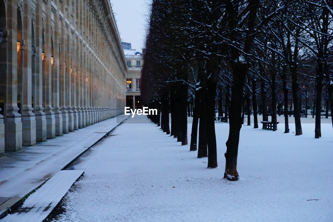 SNOW COVERED FOOTPATH IN CITY