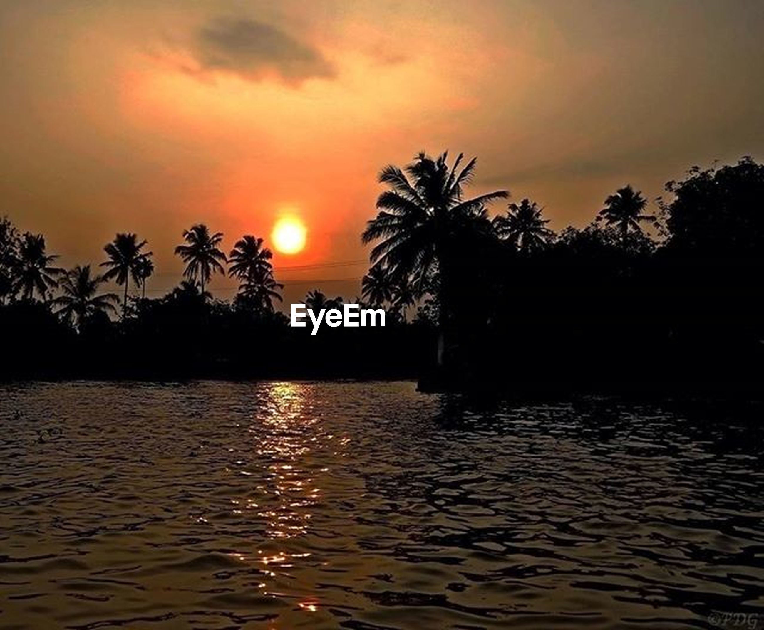 sunset, water, silhouette, tranquil scene, tree, tranquility, sky, scenics, beauty in nature, palm tree, waterfront, orange color, sun, nature, reflection, idyllic, rippled, sea, cloud - sky, lake