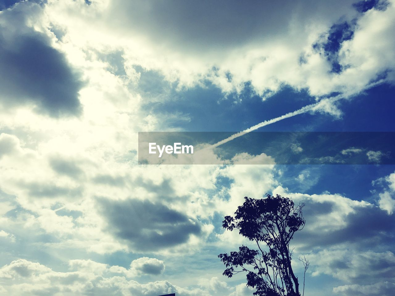 low angle view, sky, cloud - sky, nature, tree, beauty in nature, day, no people, outdoors, scenics, contrail, vapor trail