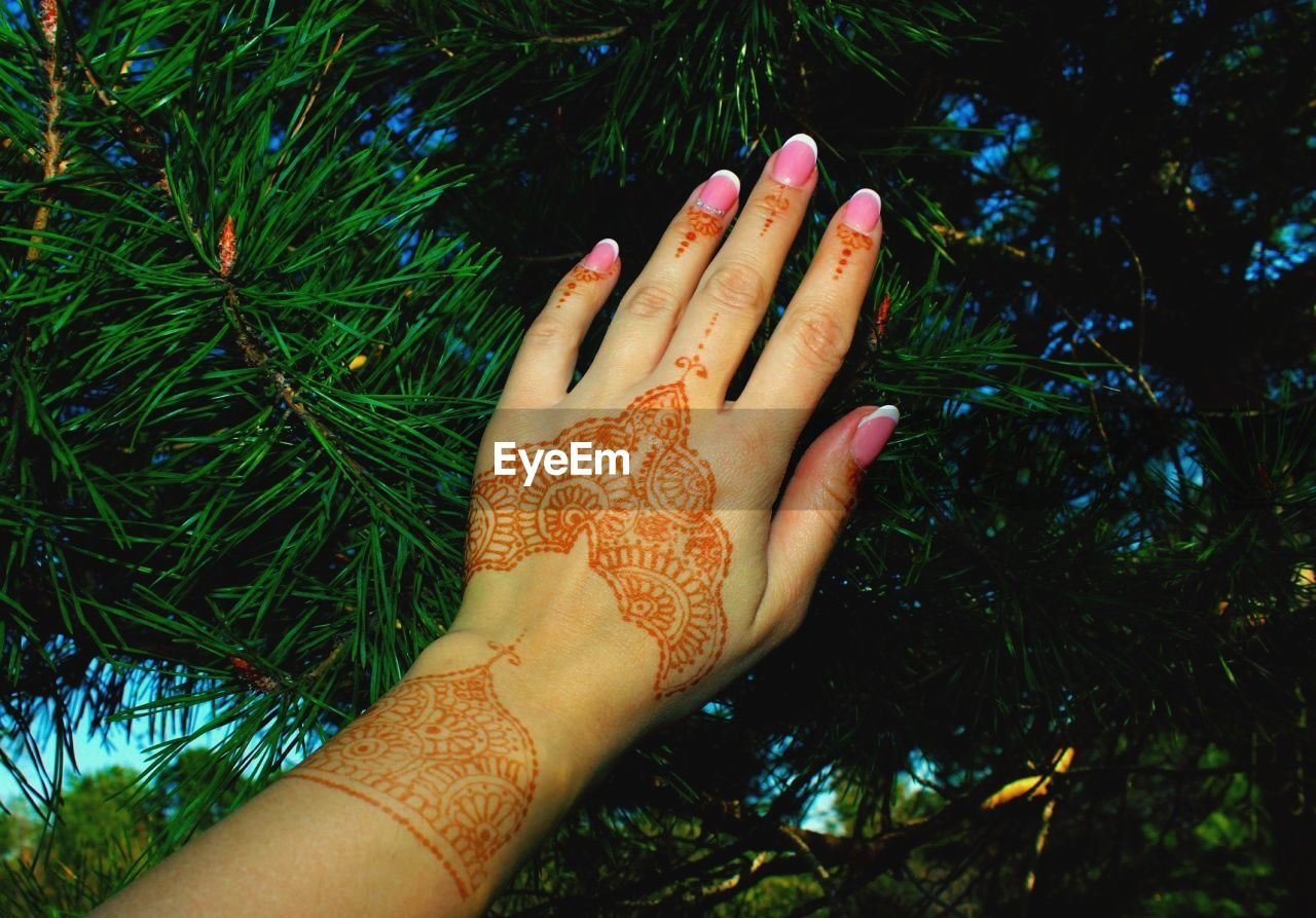 Cropped hand of woman with henna tattoo against pine tree