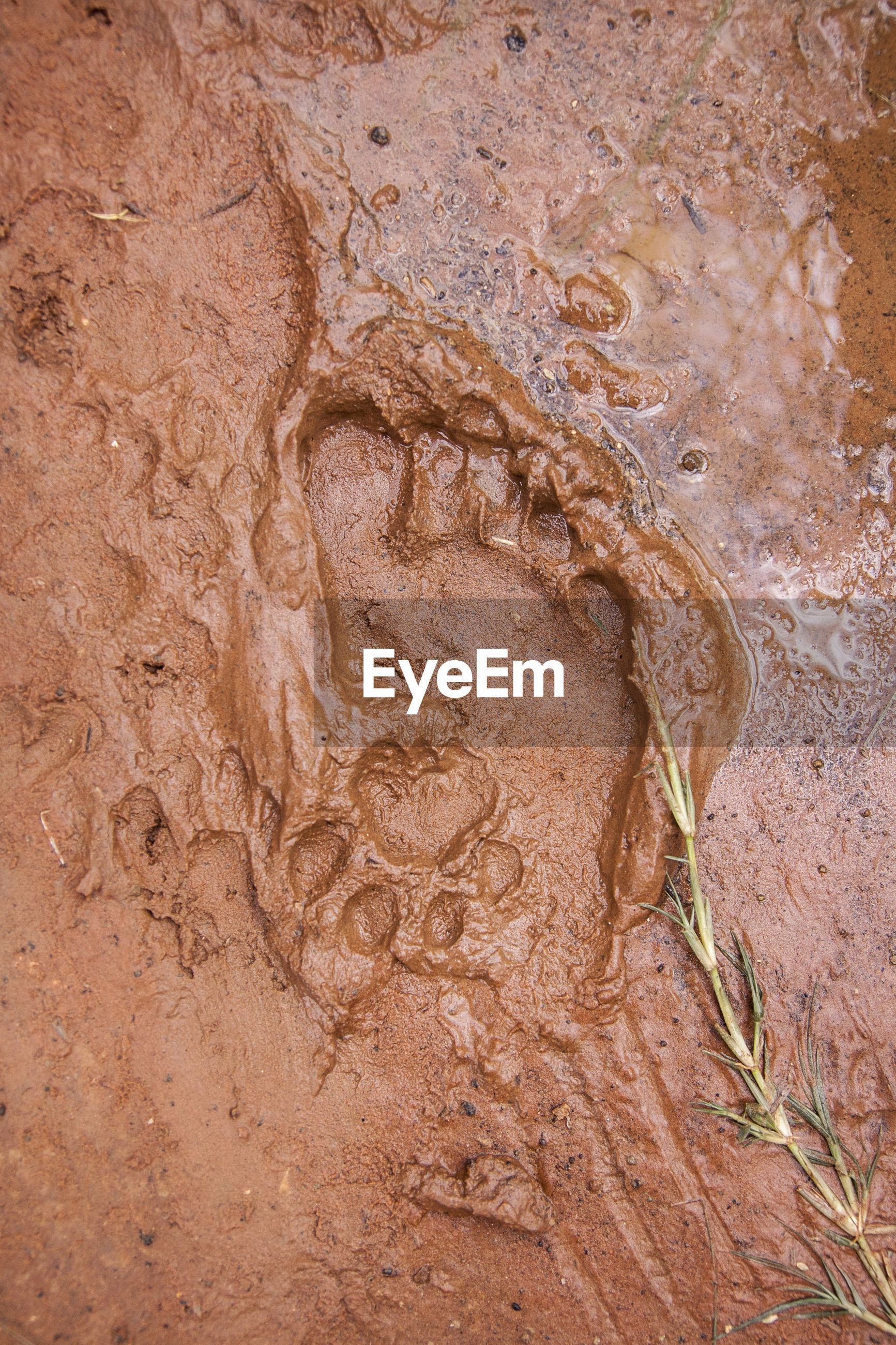 Close-Up Of Wet Sand