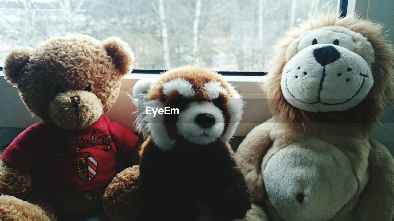 Close-Up Of Stuffed Toys Against The Window