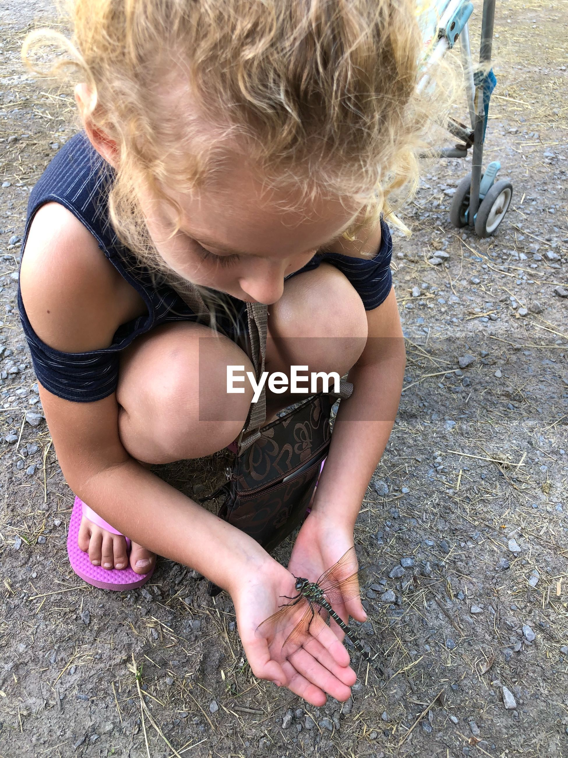 High angle view of girl playing with dragonfly on field