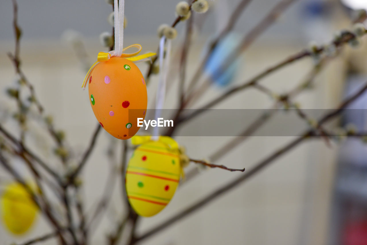 focus on foreground, close-up, day, no people, yellow, nature, plant, tree, outdoors, hanging, orange color, food, easter egg, selective focus, branch, easter, ladybug, twig, food and drink