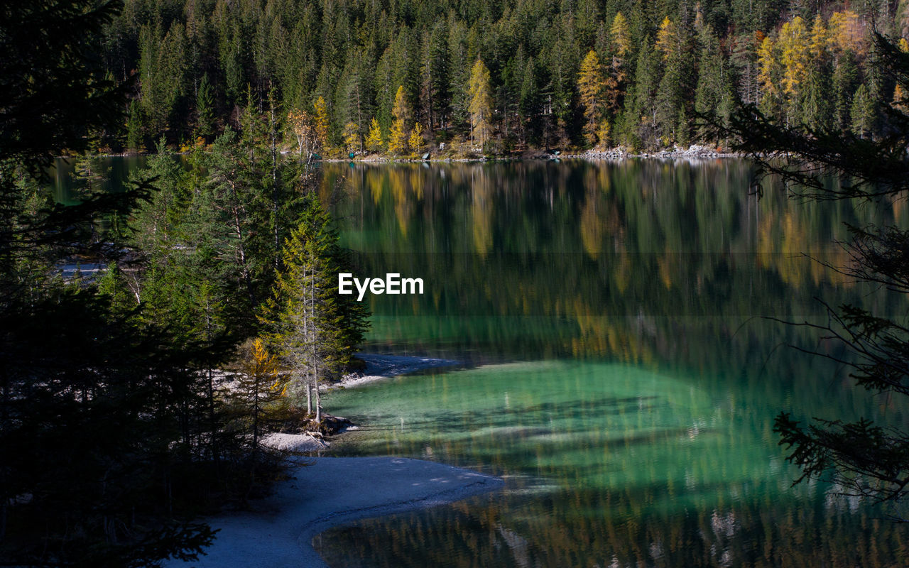 Scenic View Of Lake With Trees Reflection