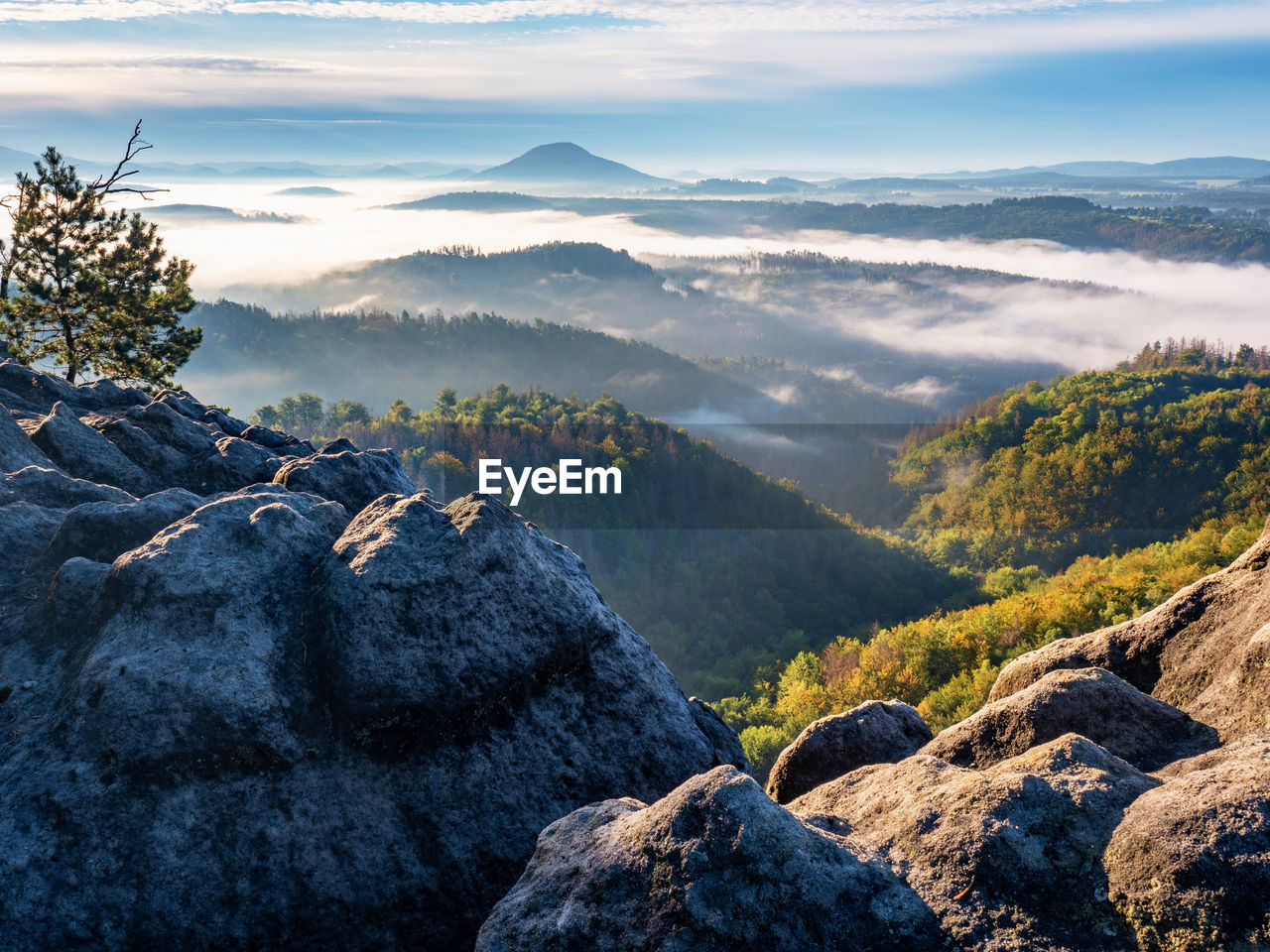 Morning landscape with fir forest and first mist.  aerial view, misty autumn season in valley
