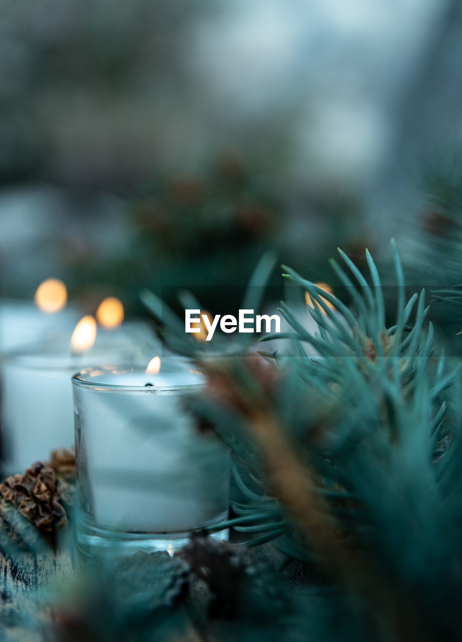 Five white votive candles with pine cone decorations and green pine branches