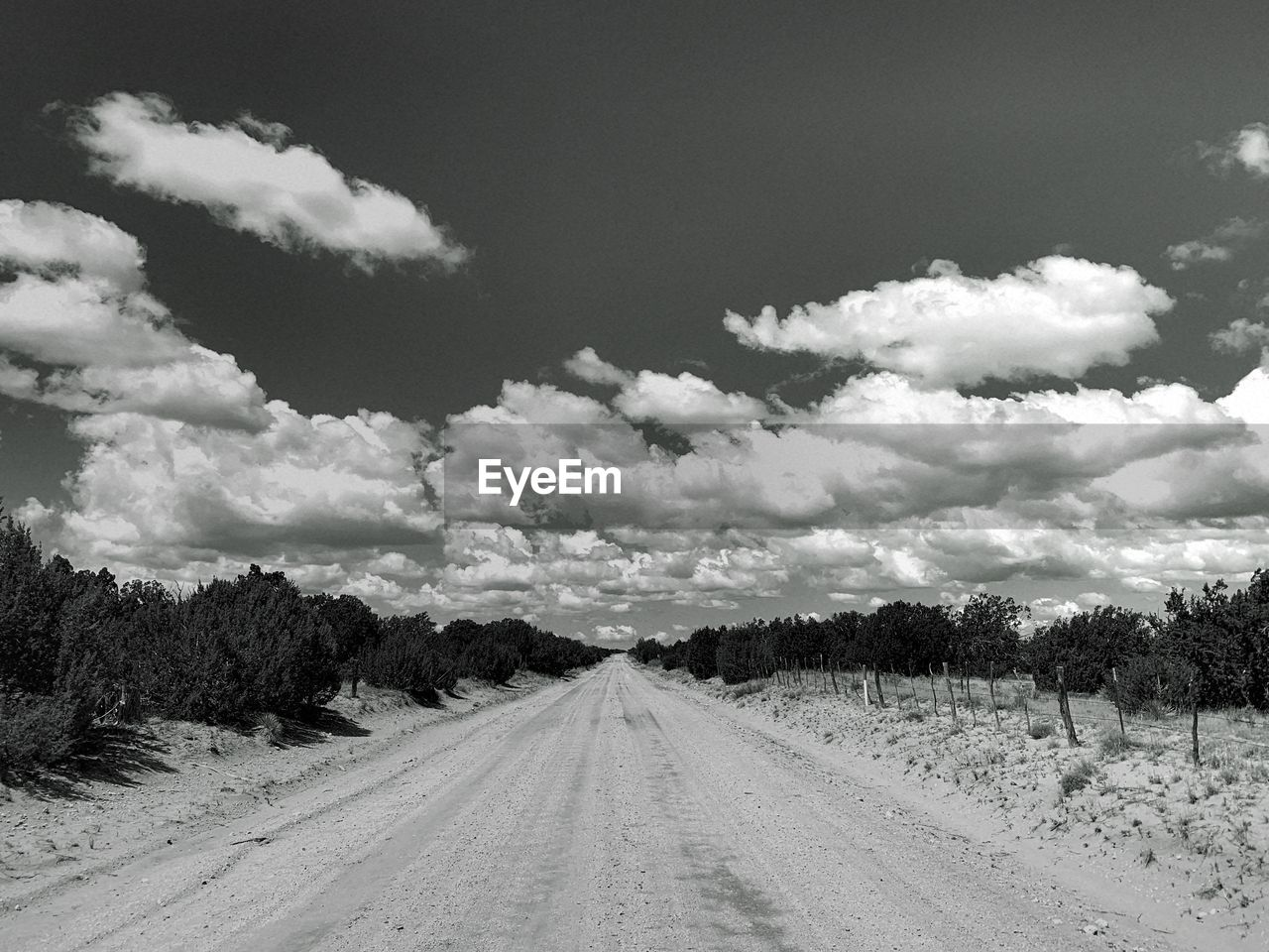 sky, cloud - sky, the way forward, direction, road, diminishing perspective, transportation, plant, beauty in nature, nature, tree, vanishing point, no people, landscape, environment, tranquility, land, tranquil scene, scenics - nature, day, outdoors