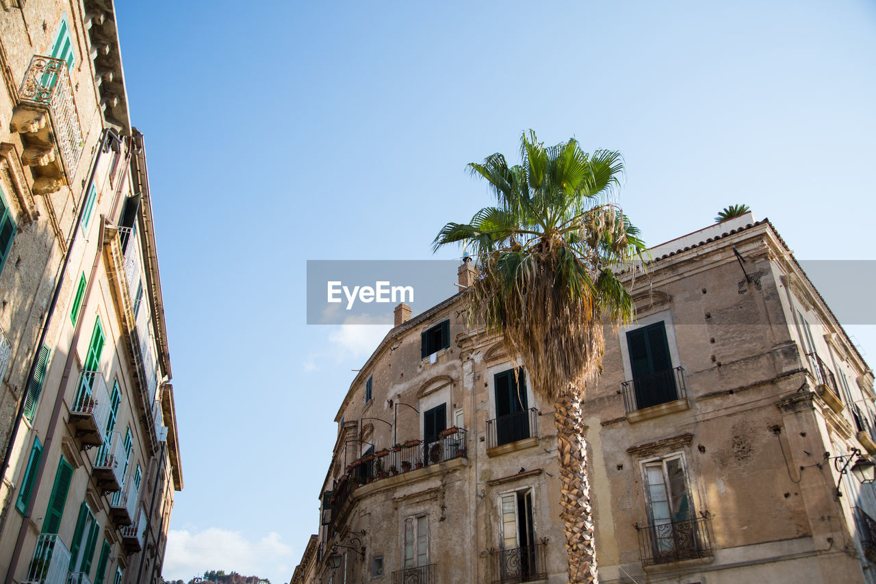 Architecture Building Exterior Built Structure Day Low Angle View Nature No People Outdoors Palm Tree Sky Tree Tropea, Town, City
