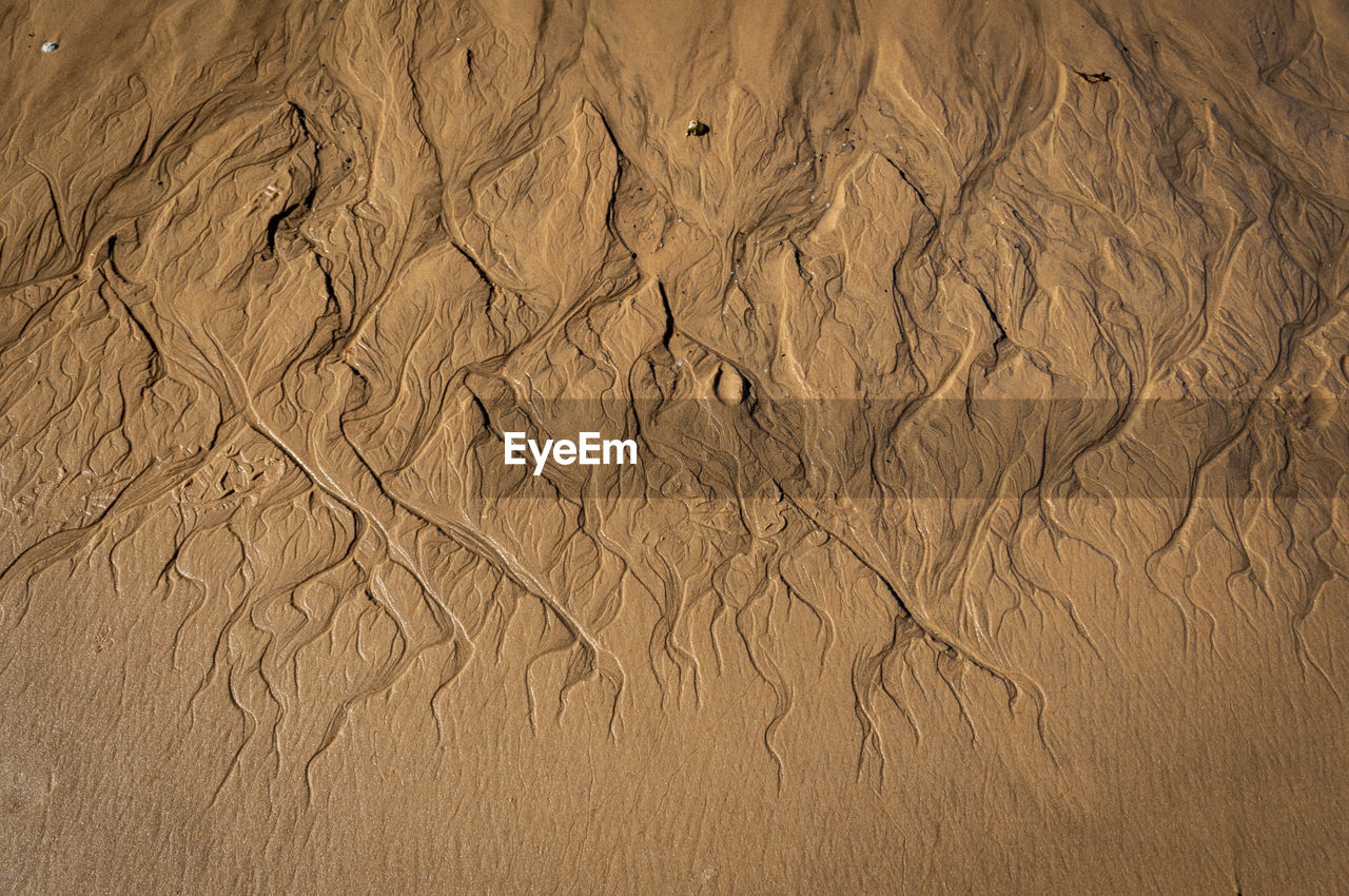 full frame, land, sand, backgrounds, nature, brown, no people, pattern, high angle view, desert, day, environment, landscape, natural pattern, outdoors, scenics - nature, wet, beach, beauty in nature, climate, arid climate