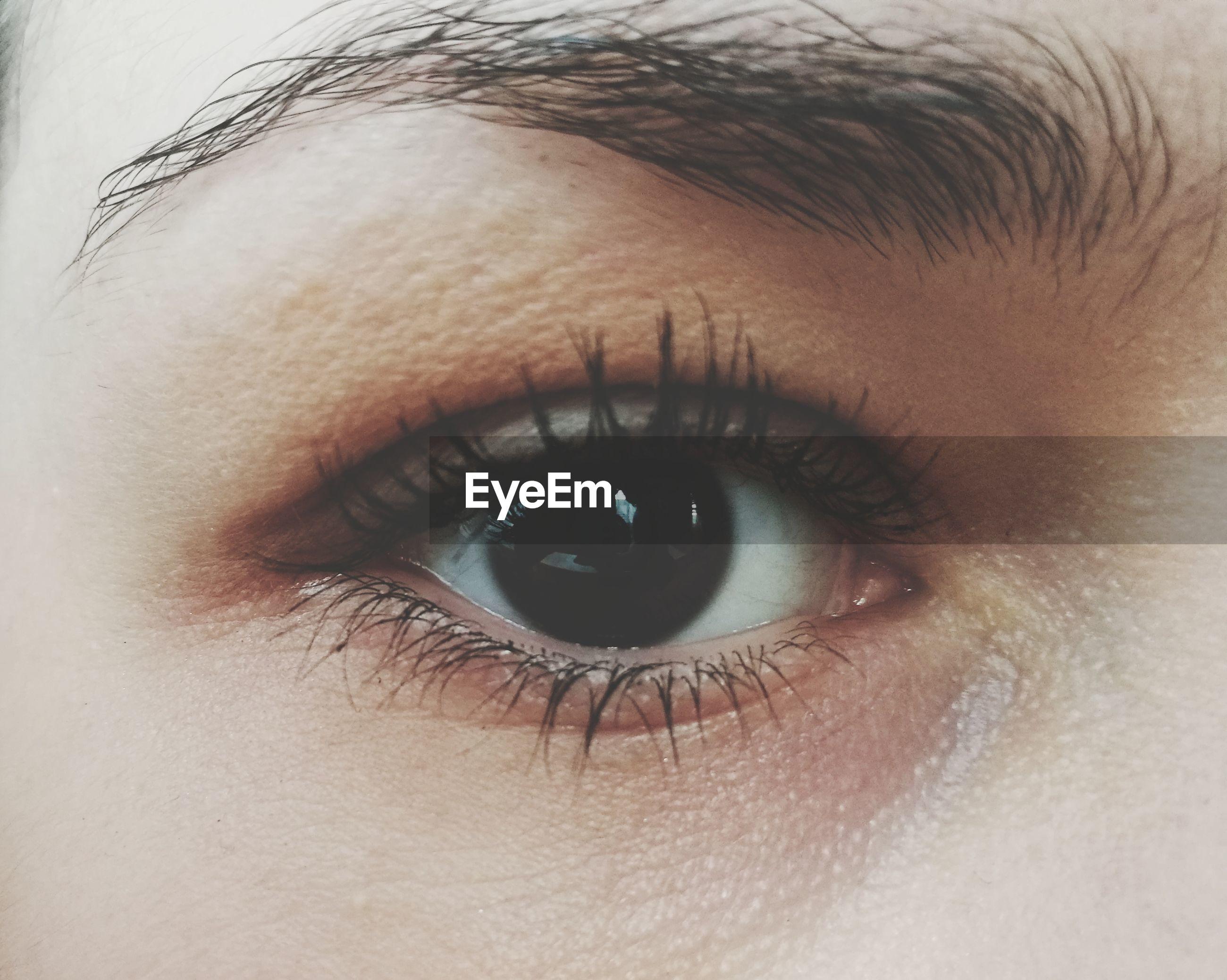 human eye, looking at camera, eyelash, portrait, one person, human body part, close-up, real people, eyeball, sensory perception, eyesight, human skin, eyebrow, iris - eye, indoors, day, people