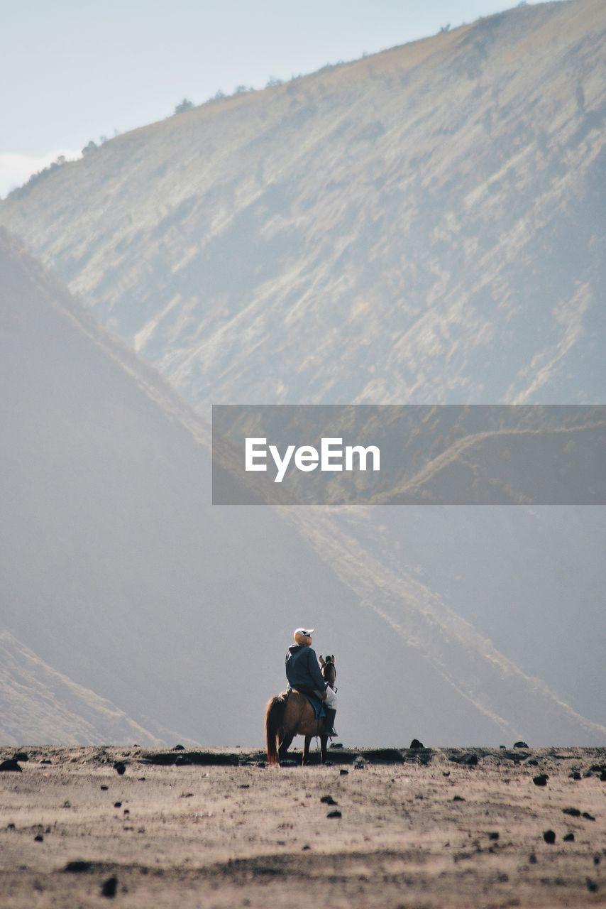 Man riding horse on land