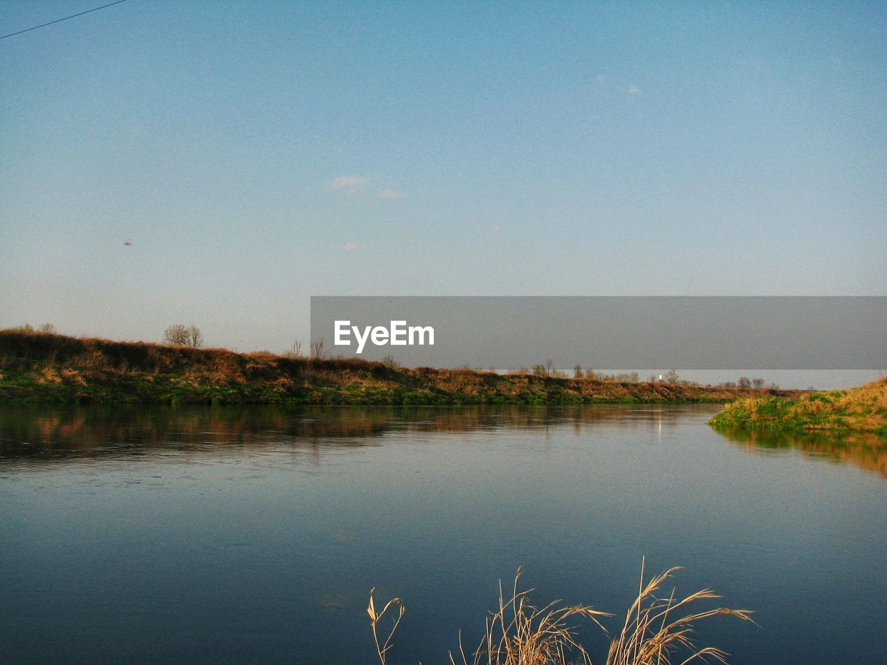 water, sky, lake, tranquility, reflection, nature, beauty in nature, tranquil scene, scenics - nature, no people, copy space, plant, clear sky, outdoors, non-urban scene, day, blue, tree