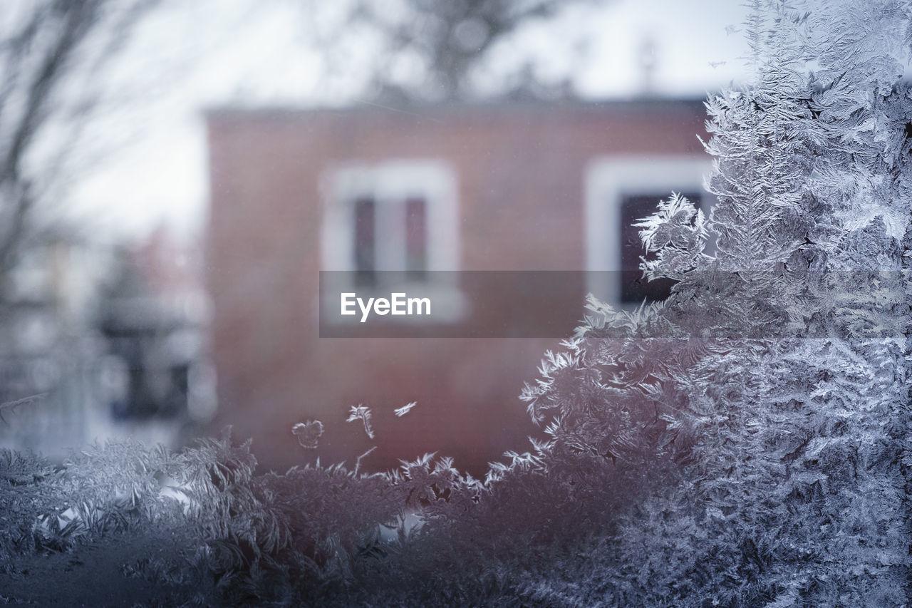 Close-Up Of Frozen Window