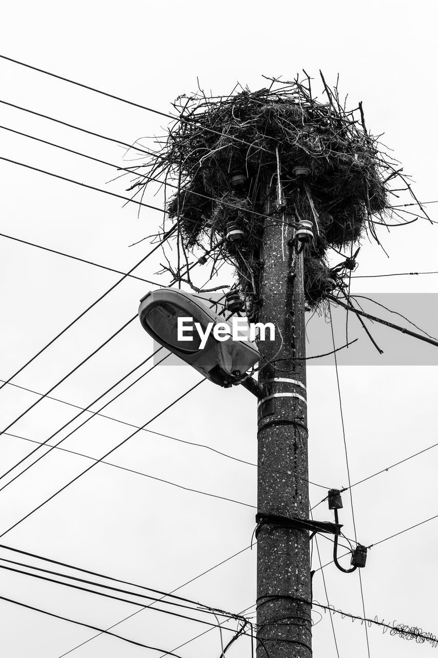 low angle view, cable, power line, pole, electricity, connection, sky, power supply, day, outdoors, clear sky, electricity pylon, no people, technology, nature