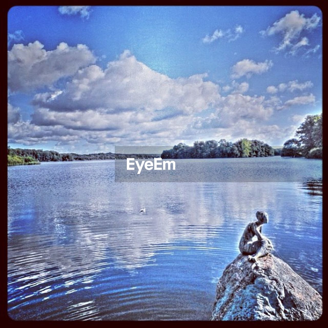 water, lake, one animal, sky, outdoors, animal themes, no people, day, animals in the wild, cloud - sky, nature, scenics, tranquil scene, beauty in nature, blue, tree, swimming, bird, swan, close-up