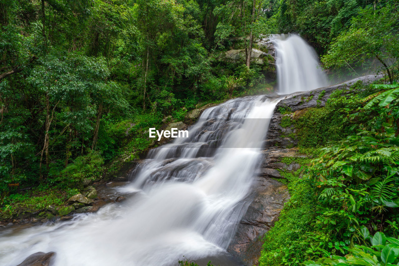 scenics - nature, forest, waterfall, motion, tree, plant, long exposure, blurred motion, land, flowing water, beauty in nature, water, nature, rock, environment, growth, rock - object, power in nature, rainforest, no people, flowing, outdoors, falling water