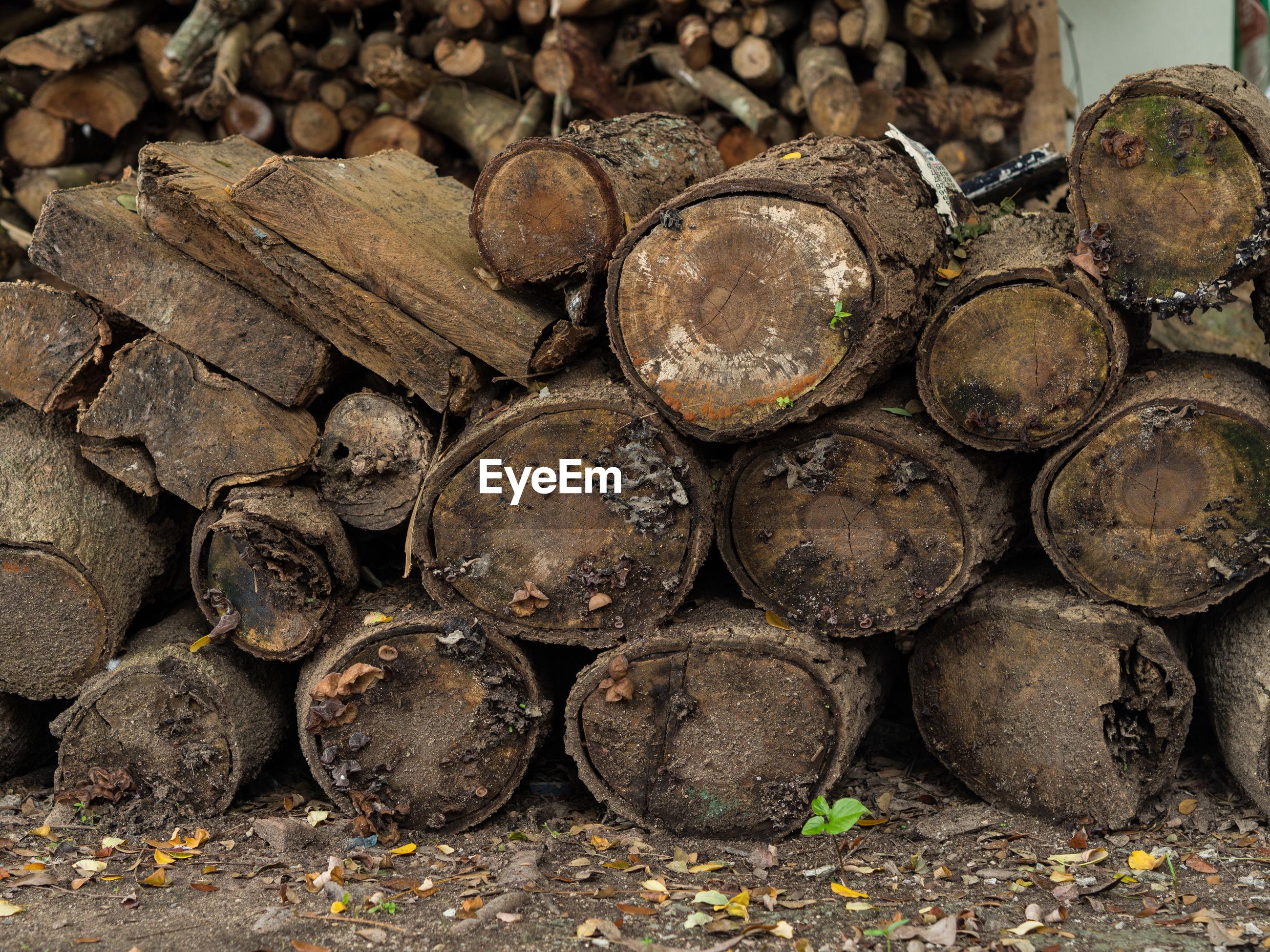 Full frame shot of stacks of logs