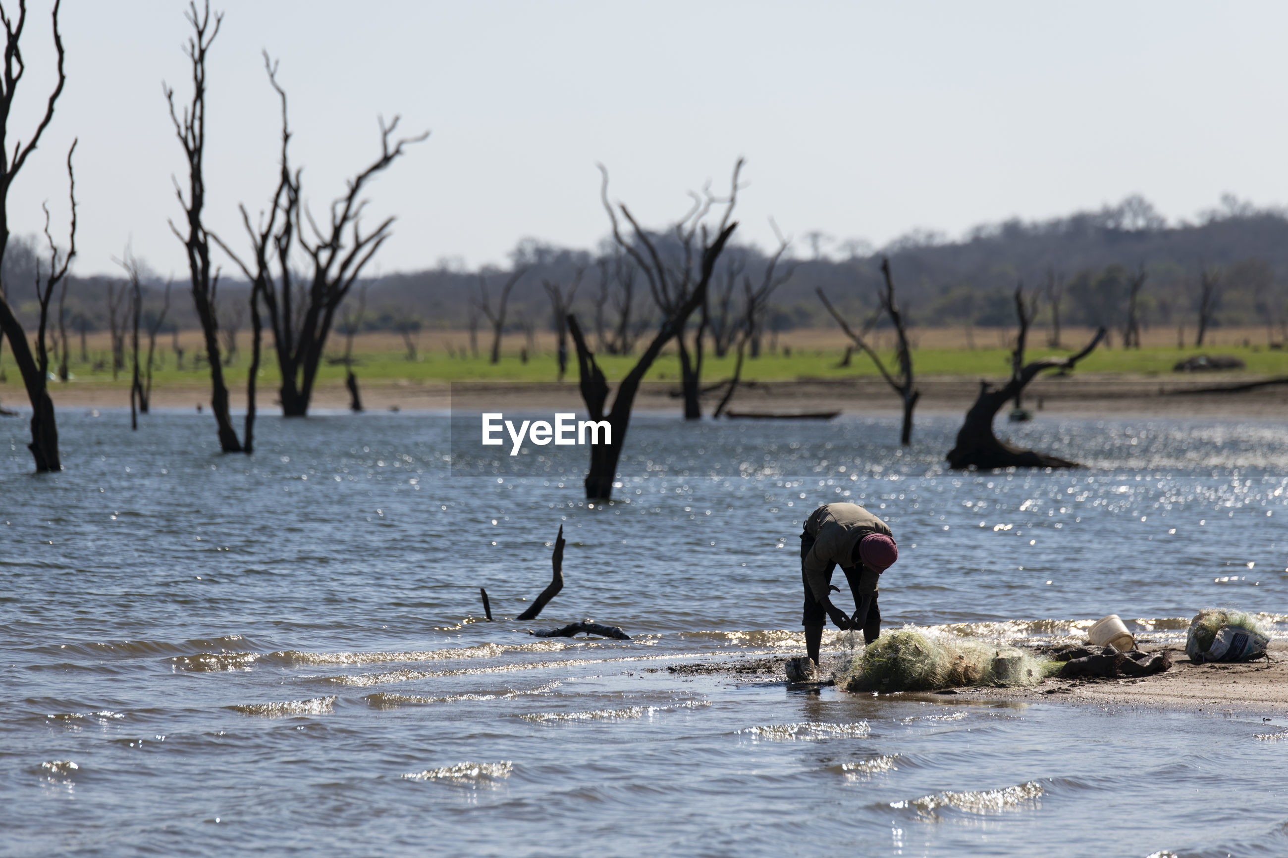 Kafue national park in zambia, africa