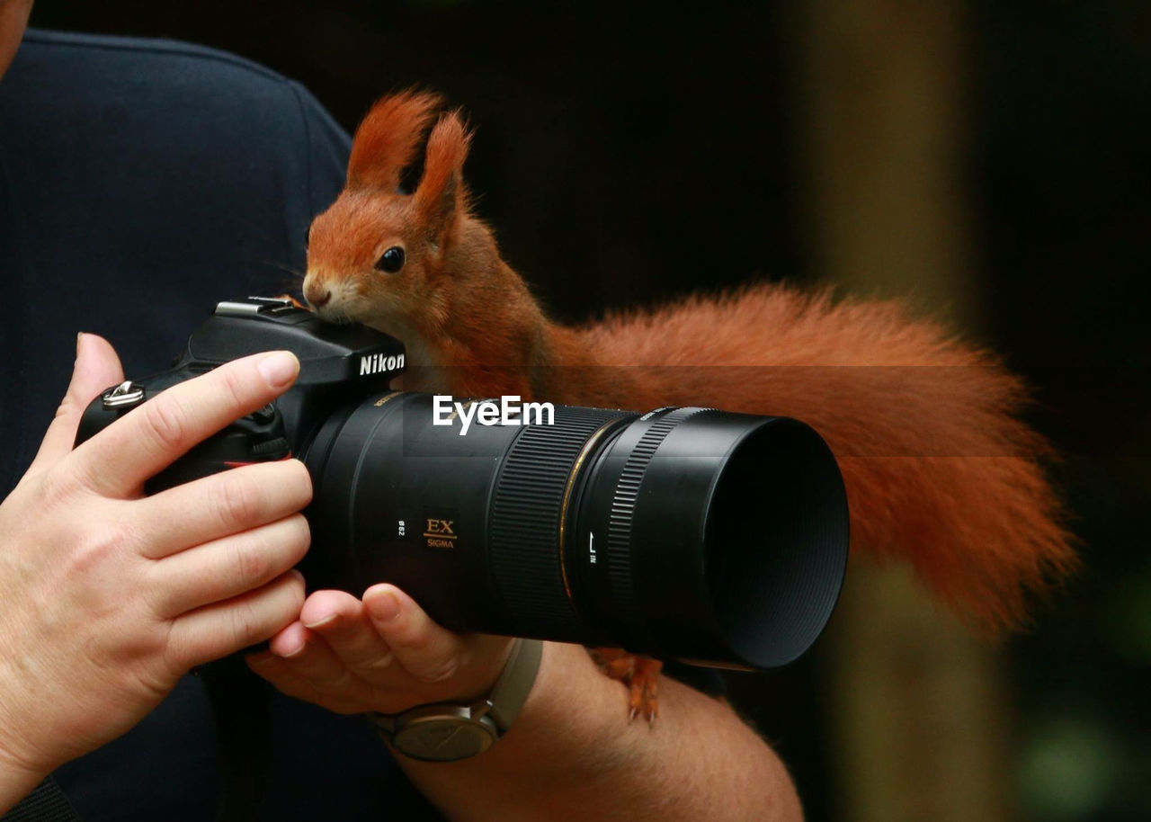camera - photographic equipment, human hand, real people, photography themes, one person, holding, mammal, photographing, photographer, technology, human body part, one animal, digital camera, men, digital single-lens reflex camera, leisure activity, domestic animals, day, close-up, outdoors, people