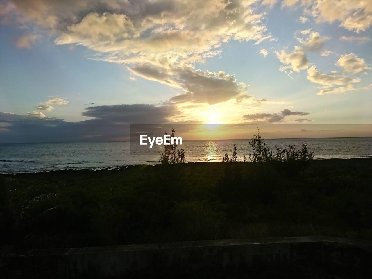 water, sky, sea, cloud - sky, scenics - nature, beauty in nature, sunset, tranquility, tranquil scene, horizon over water, horizon, beach, land, nature, idyllic, no people, non-urban scene, outdoors, plant