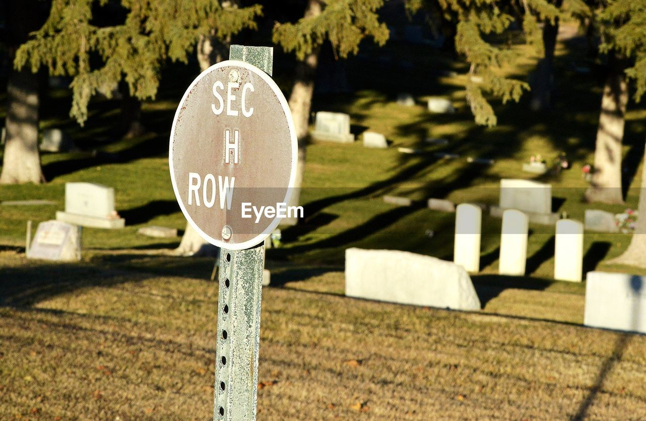 communication, day, text, plant, nature, no people, tree, sign, focus on foreground, grave, outdoors, cemetery, stone, grass, number, religion, close-up, western script, tombstone, sunlight