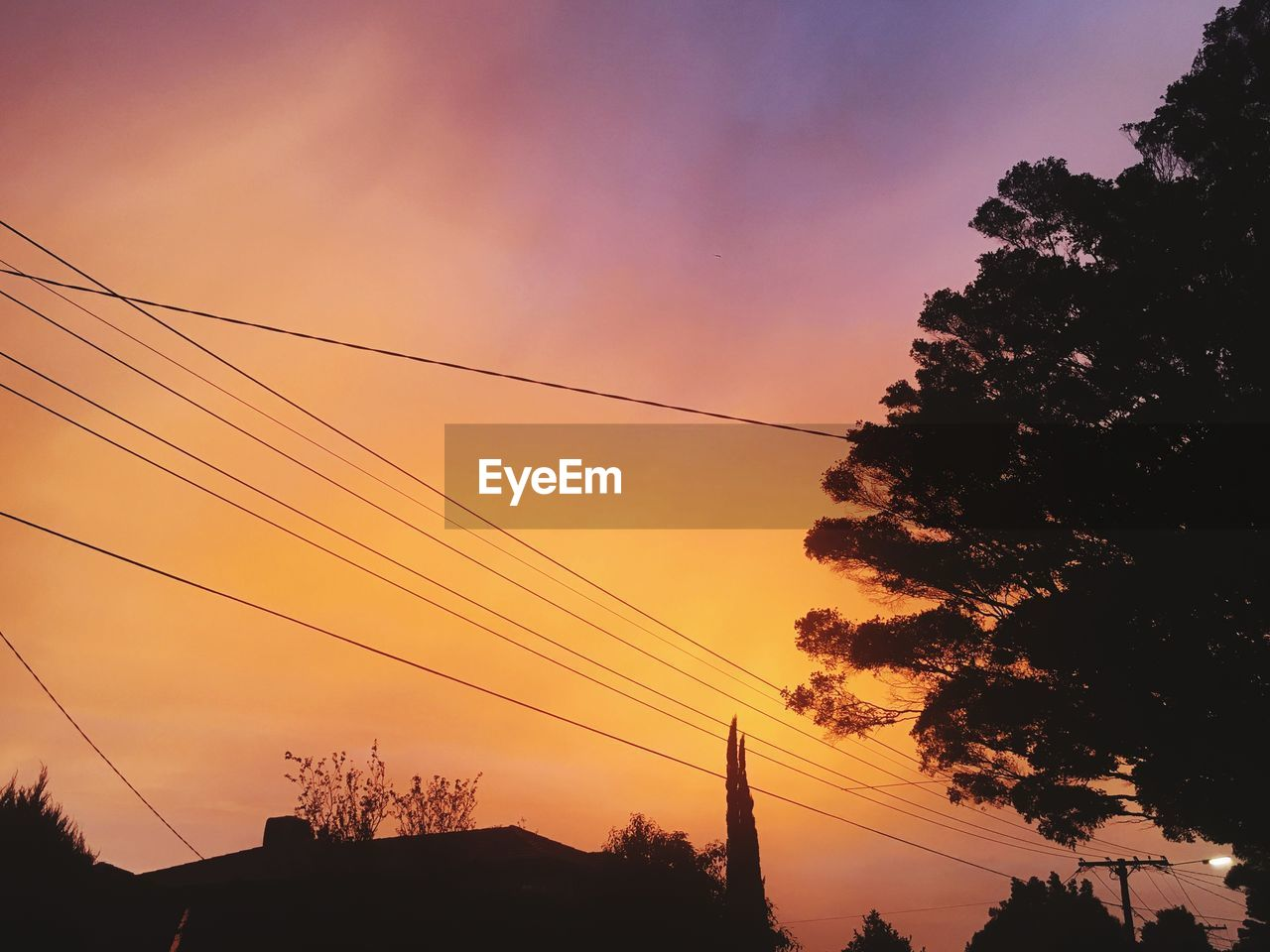 sky, silhouette, sunset, tree, cable, plant, electricity, power line, nature, low angle view, beauty in nature, cloud - sky, technology, no people, connection, power supply, orange color, electricity pylon, outdoors, tranquility, telephone line, romantic sky
