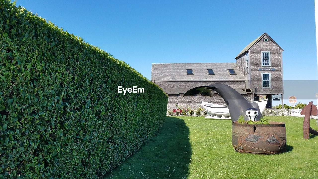 architecture, grass, built structure, building exterior, growth, green color, house, clear sky, no people, plant, outdoors, day, blue, nature, sky