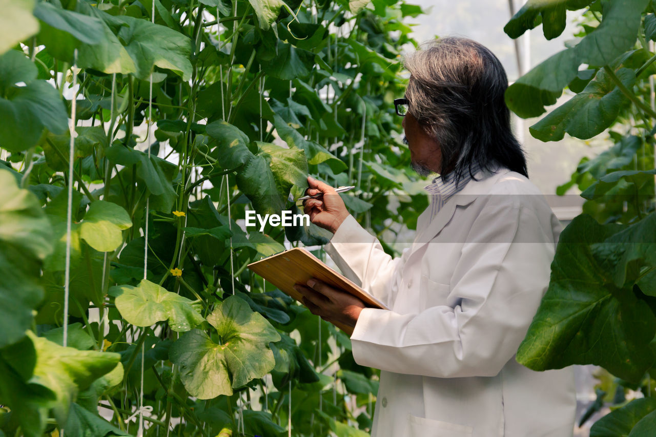 leaf, one person, plant part, real people, occupation, plant, adult, clothing, nature, holding, lab coat, growth, standing, green color, side view, waist up, day, agriculture, healthcare and medicine, outdoors