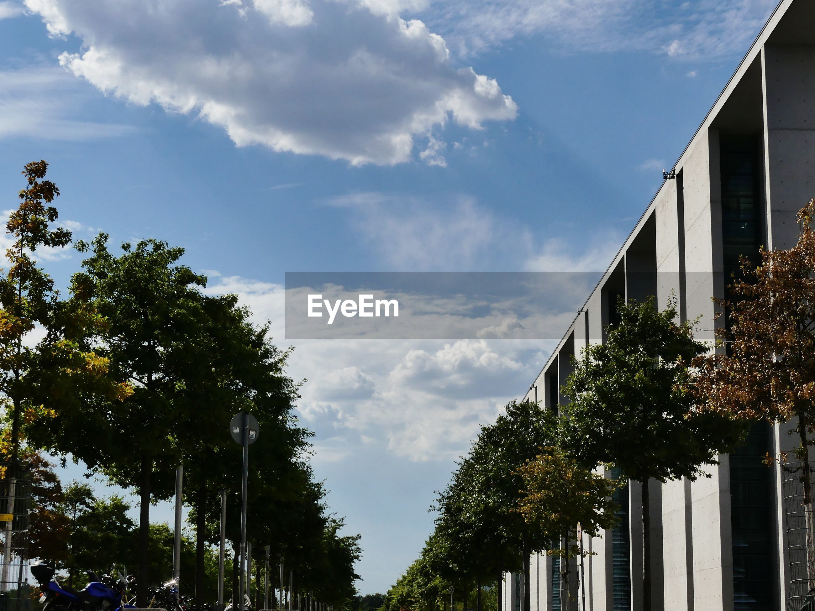 LOW ANGLE VIEW OF BUILDING AND TREES AGAINST SKY