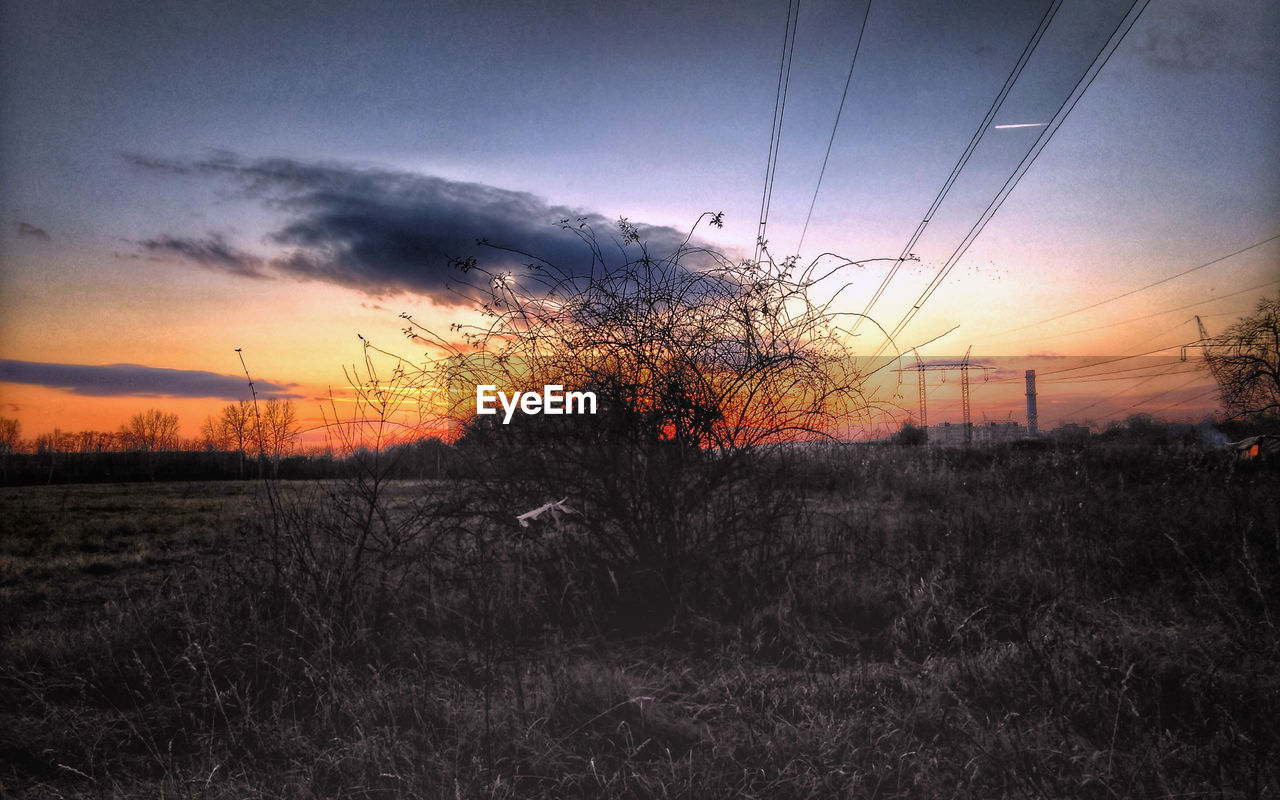 sunset, nature, silhouette, sky, tranquil scene, scenics, beauty in nature, tranquility, dusk, no people, landscape, tree, field, bare tree, outdoors, cloud - sky, grass, electricity pylon, day