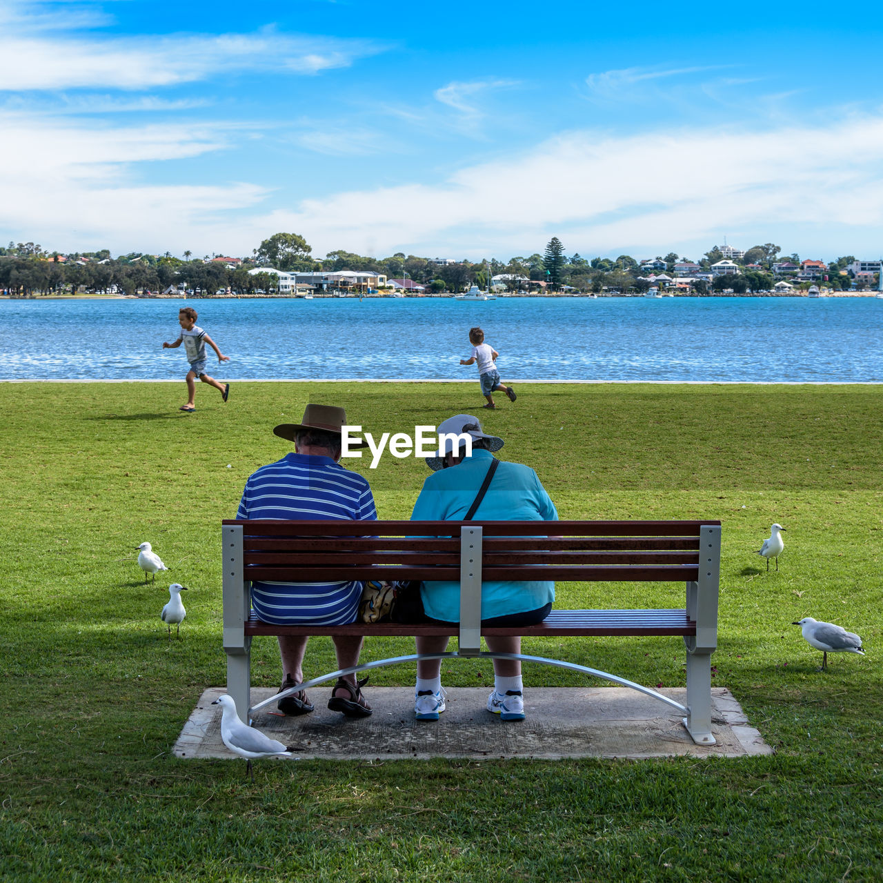water, real people, sky, men, grass, nature, day, leisure activity, cloud - sky, land, togetherness, lifestyles, sitting, group of people, people, full length, sea, plant, rear view, outdoors