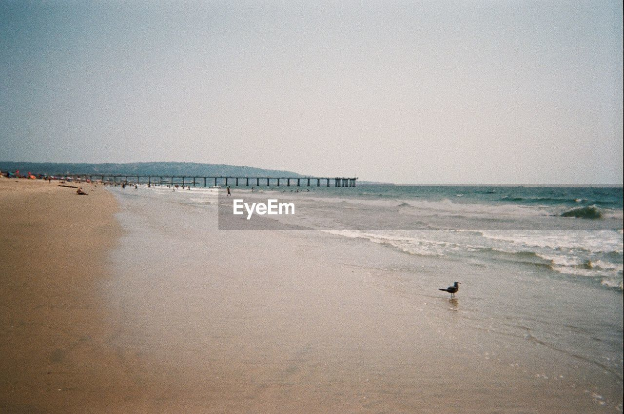 sea, water, beach, land, sky, horizon, sand, horizon over water, clear sky, nature, beauty in nature, scenics - nature, copy space, incidental people, day, motion, tranquility, outdoors, tranquil scene