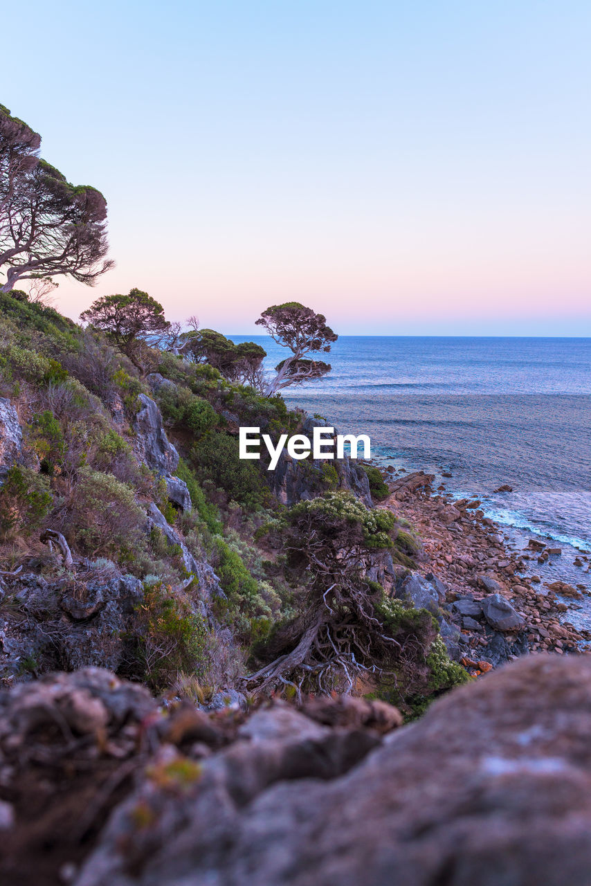 sea, sky, water, beauty in nature, rock, horizon over water, scenics - nature, tranquil scene, horizon, rock - object, tranquility, solid, beach, land, nature, clear sky, plant, no people, non-urban scene, outdoors, rocky coastline