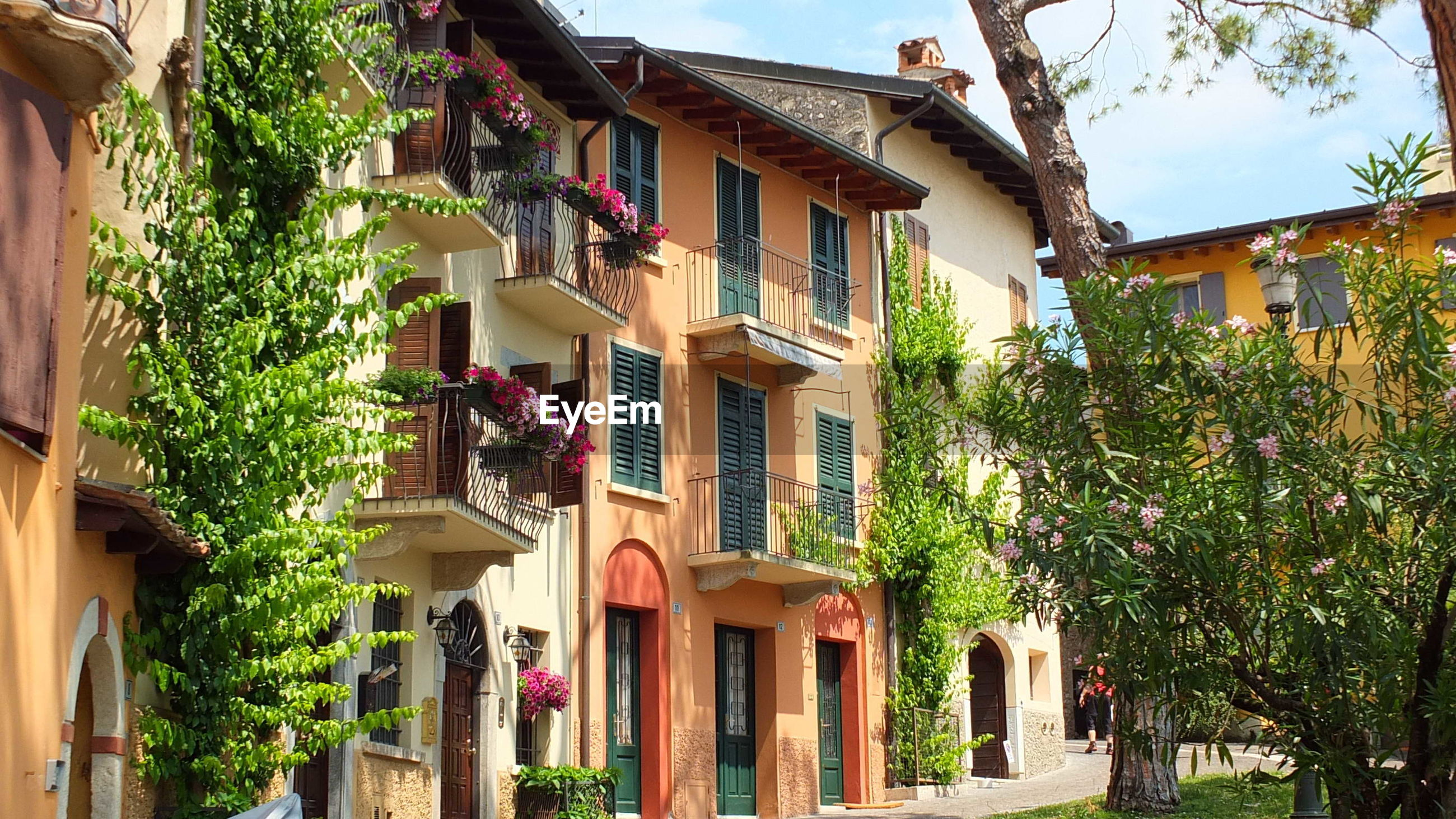 architecture, building exterior, built structure, tree, house, no people, residential building, outdoors, plant, sky, day